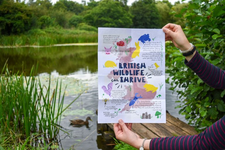 MA Communication Design work by Madeleine Smith showing a photograph of a colourful poster representing British wildlife held up in front of a natural lake scene.